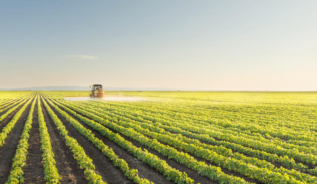 Agronegócio: Inovação e tecnologia dão maior controle na gestão de fazendas