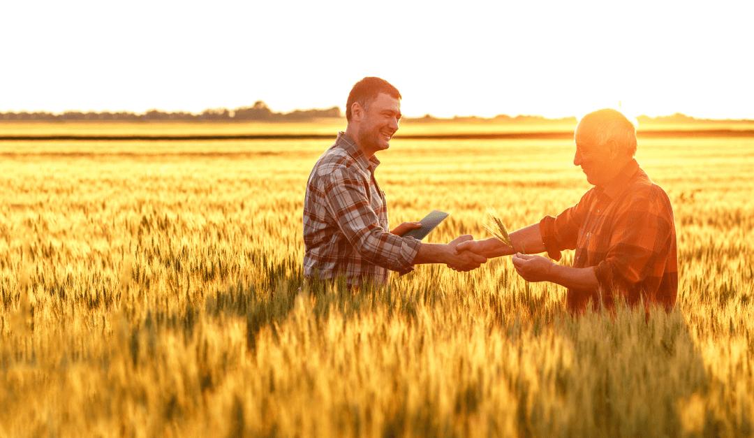 Agronegócio: Empresas otimizam a forma de rentabilizar insumos agrícolas