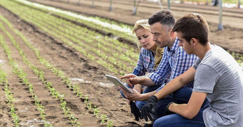 Fazendas do futuro:  o melhor caminho para a sucessão familiar, legado e inovação tecnológica