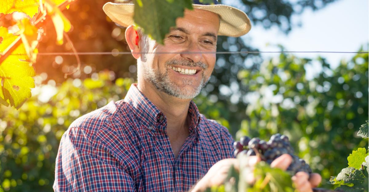 Agricultura Familiar: Subsistência ou Geração de Renda?