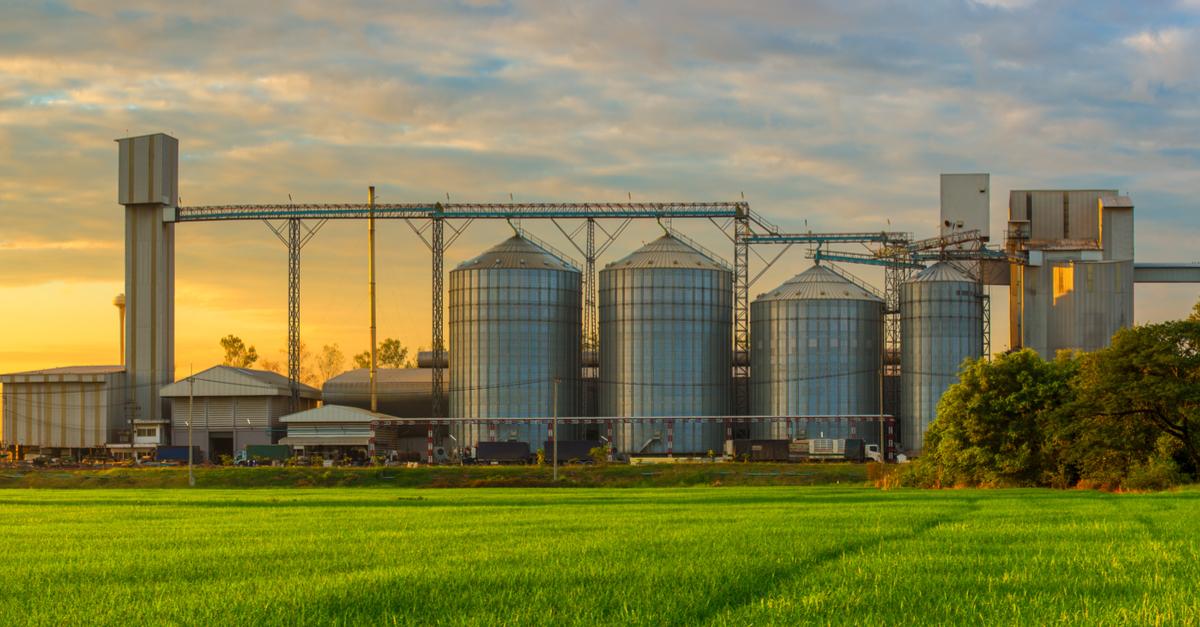 Armazenagem de grãos:Tão importante quanto o resto da produção