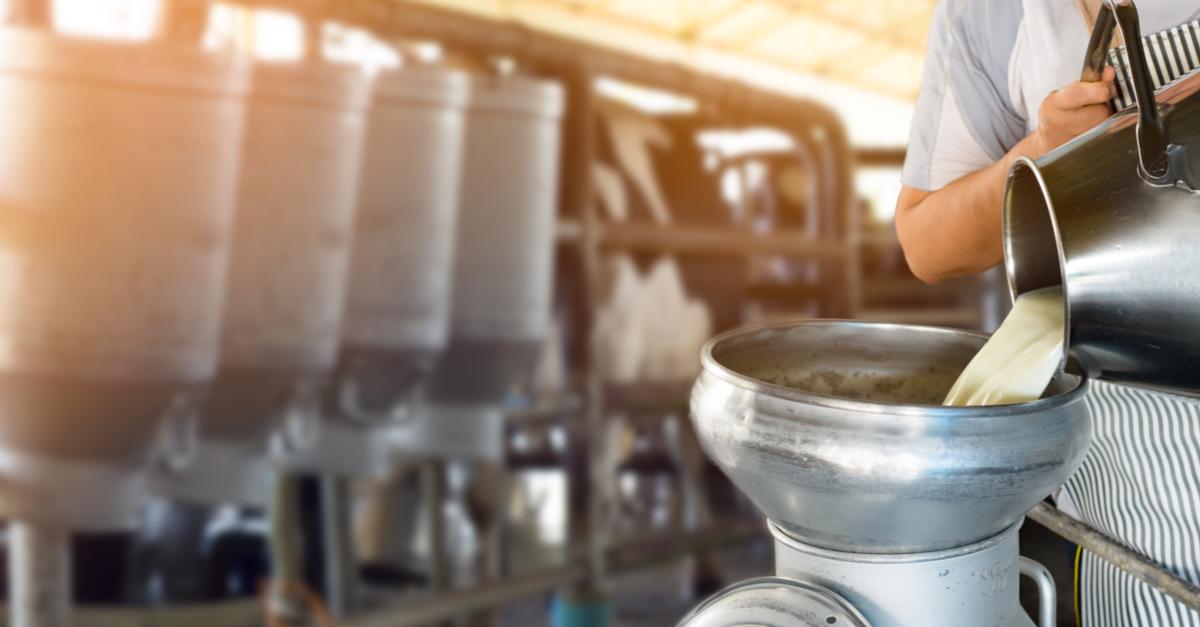 Da fazenda para a Indústria: A revolução da tecnologia nos Laticínios