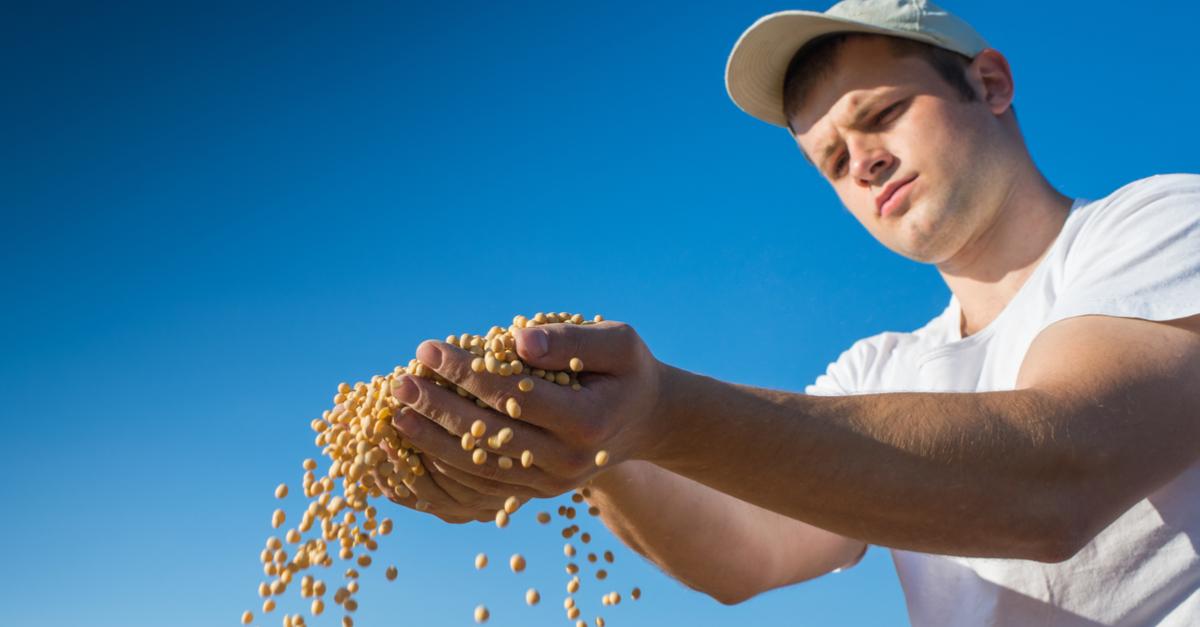 tratamento de sementes