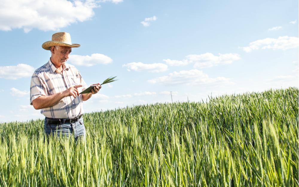 Portal do Produtor: A tecnologia já é realidade no meio rural