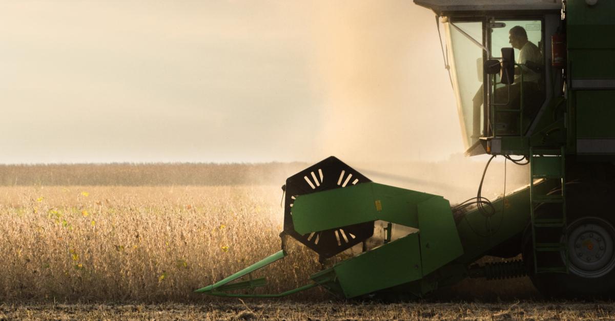 Como minimizar a queda da soja em 2019?