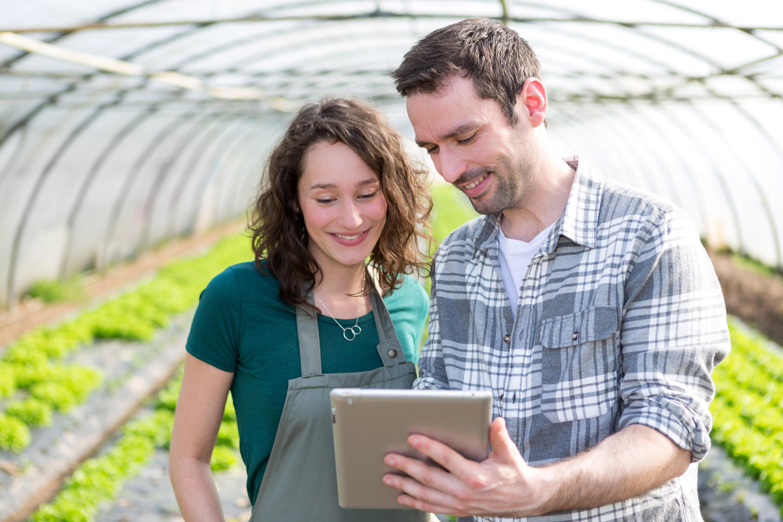 Agricultura de precisão: conectividade não garante o êxito sozinha