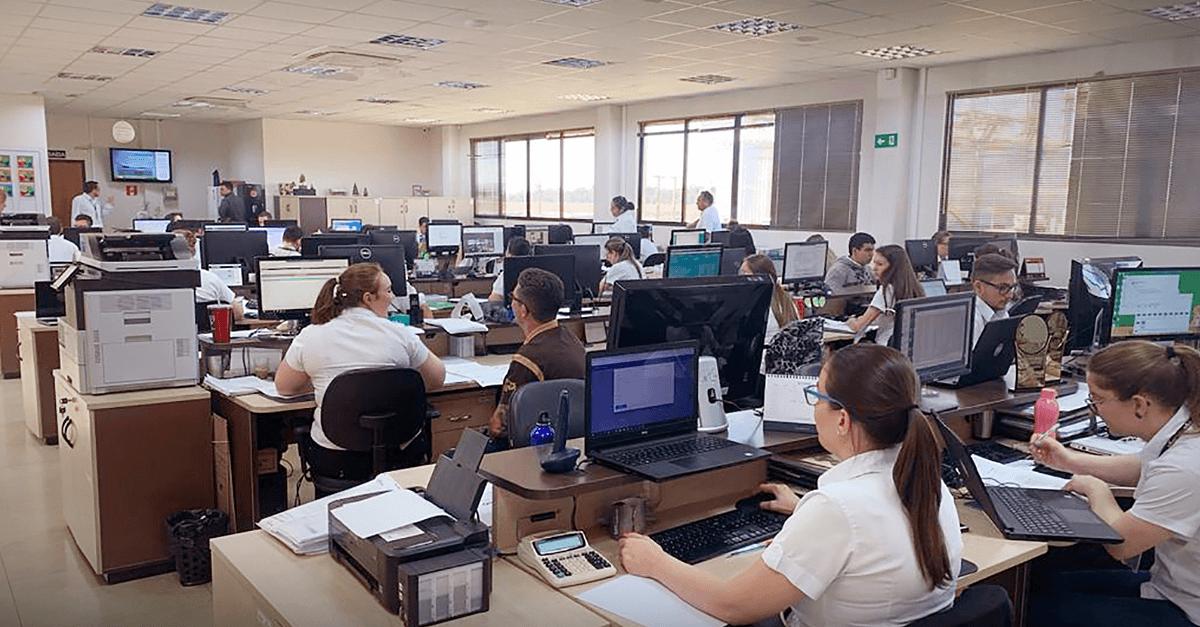 Primato sistema de gestão Viasoft